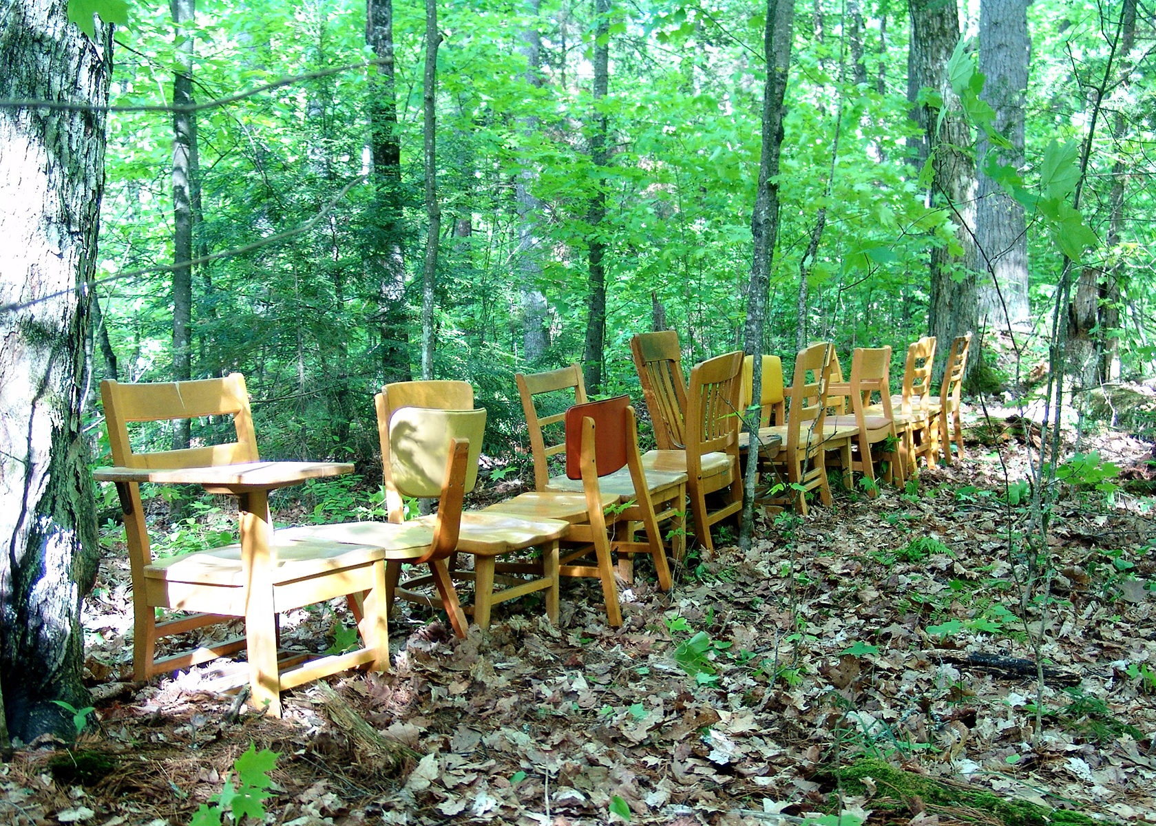 The Rest of the Forest - Part 1 | 2007 | found chairs | collaboration with Bird Ross