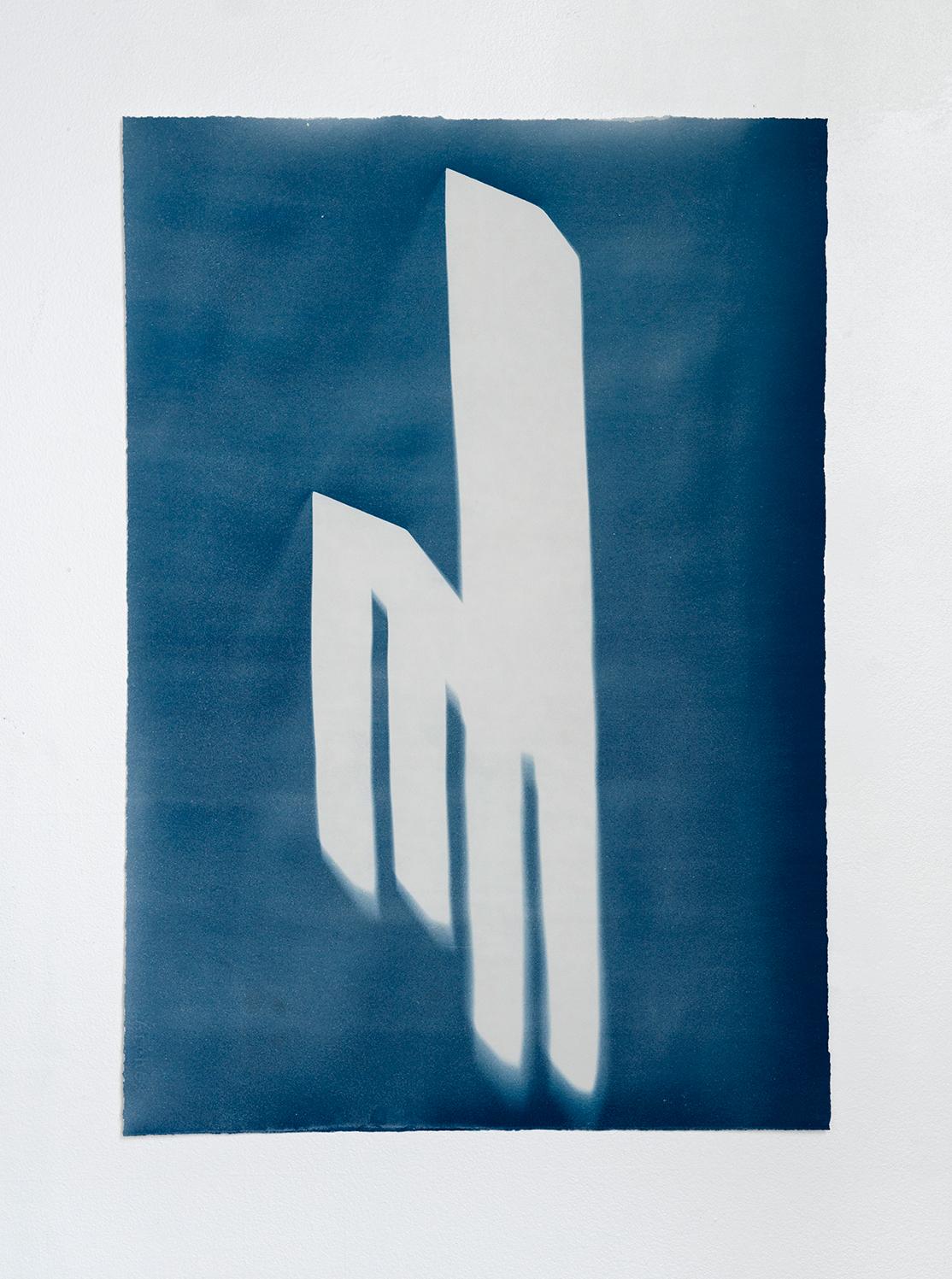 Cyanotype I 2014 I cyanotype print on paper I 20.25 x 29.5