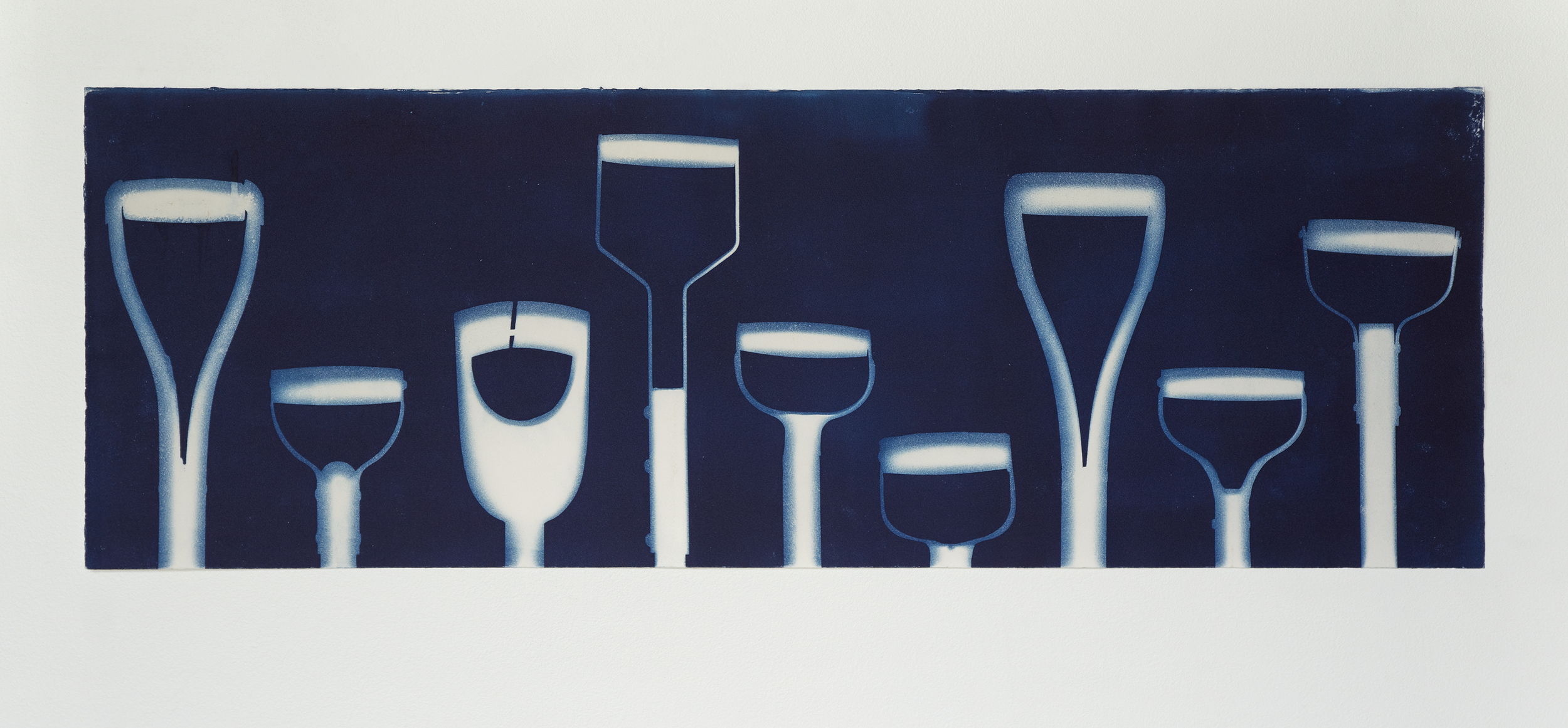 Not a Dozen Odd  I  2014  I  cyanotype print on paper  I  44 x 15.25