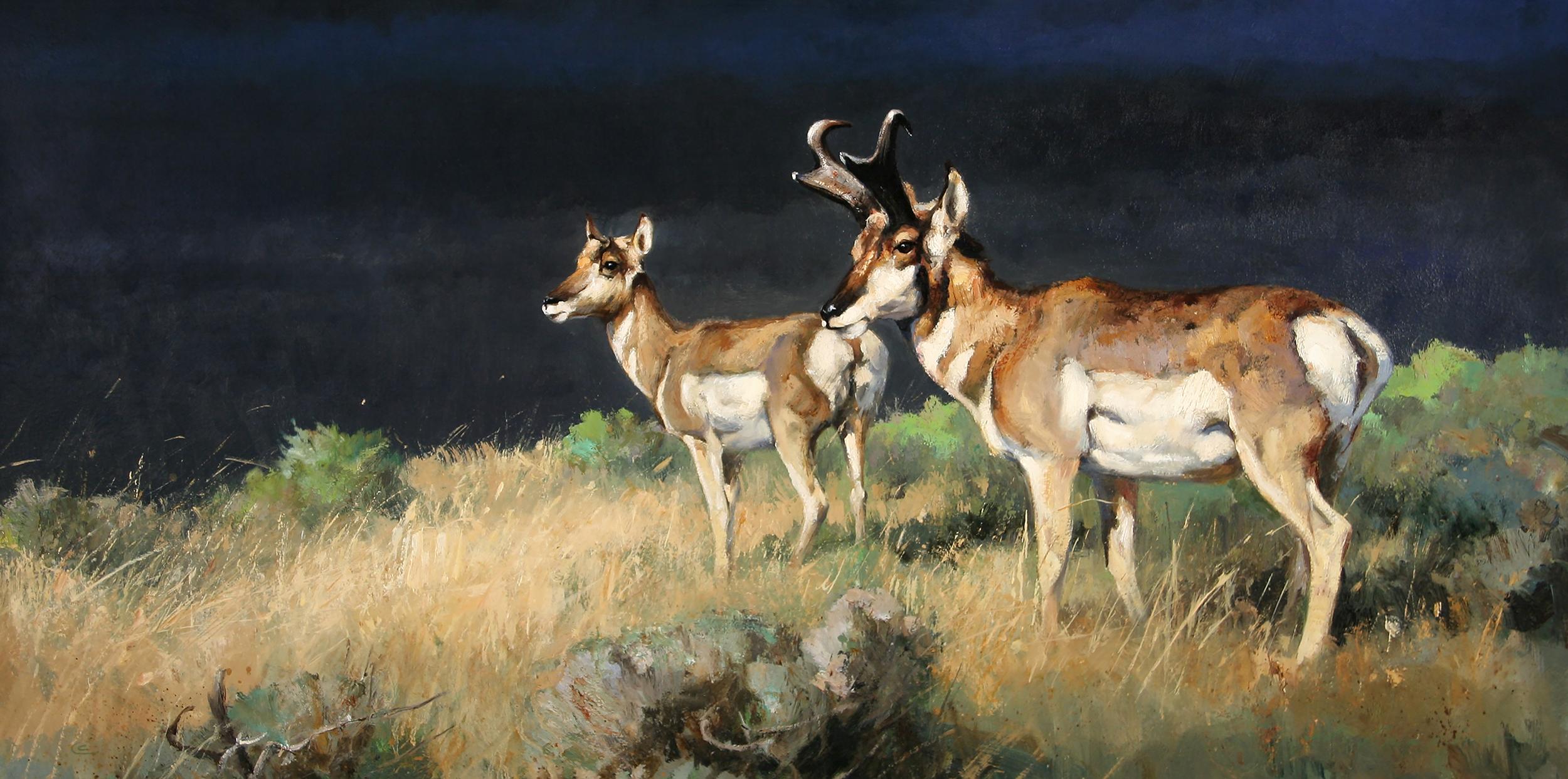 """Prairie Winds"" 18 x 36 Oil"