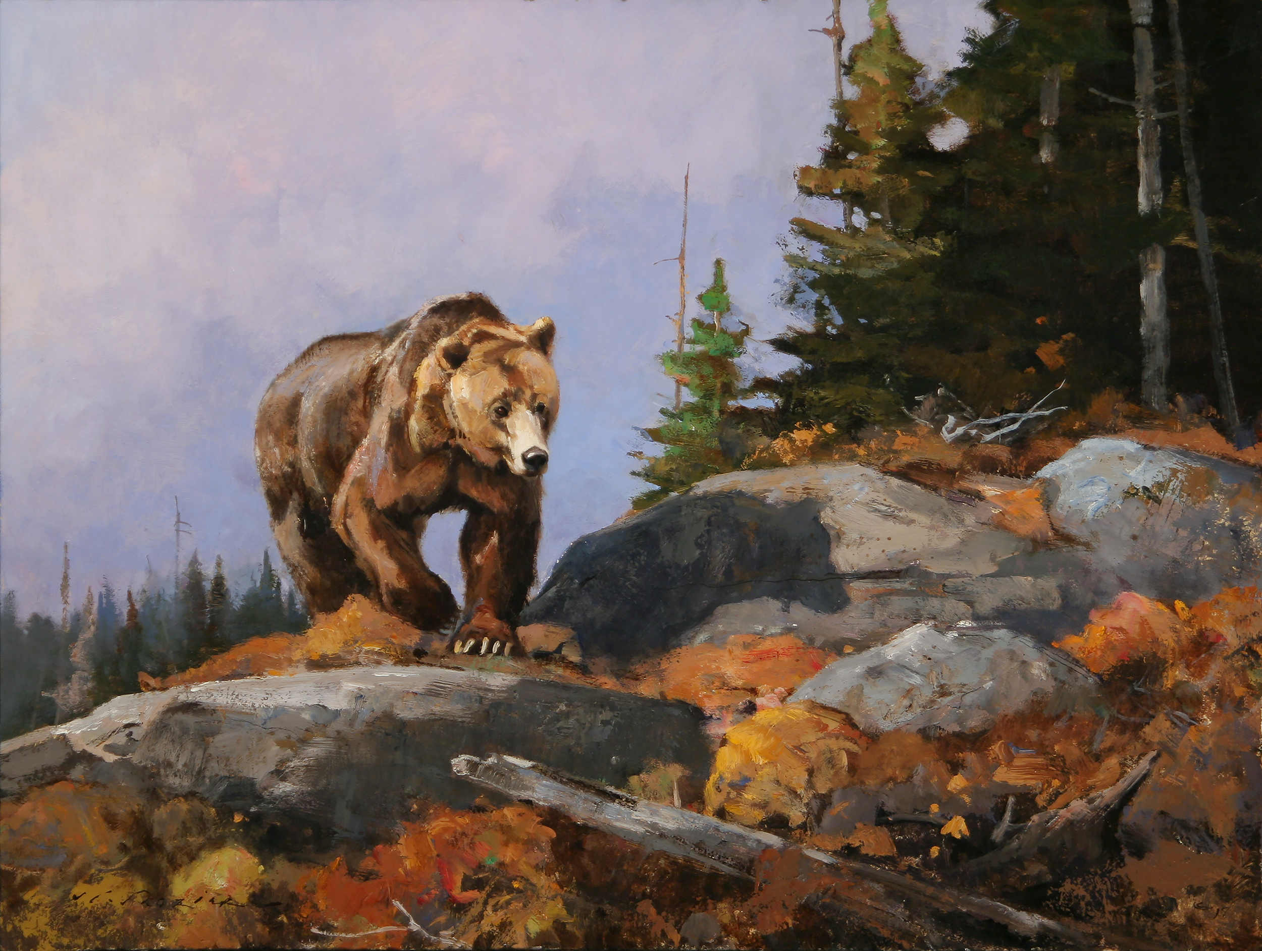 """""""Grizzly Crossing the Divide"""" 18 x 24 Oil"""