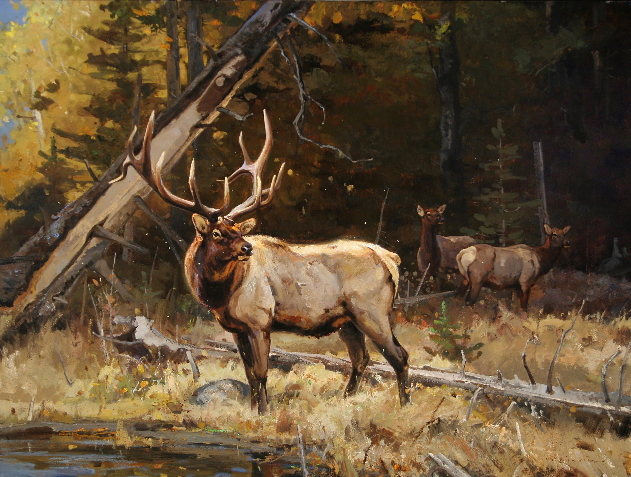 """""""Forest Sentinels"""" 36 x 48 Oil ( Charlie Russell Museum)"""