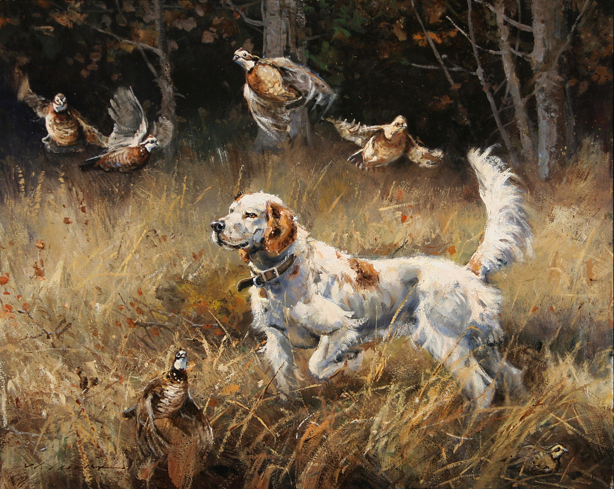 """Wild Wings"" 24 x 30 Oil"