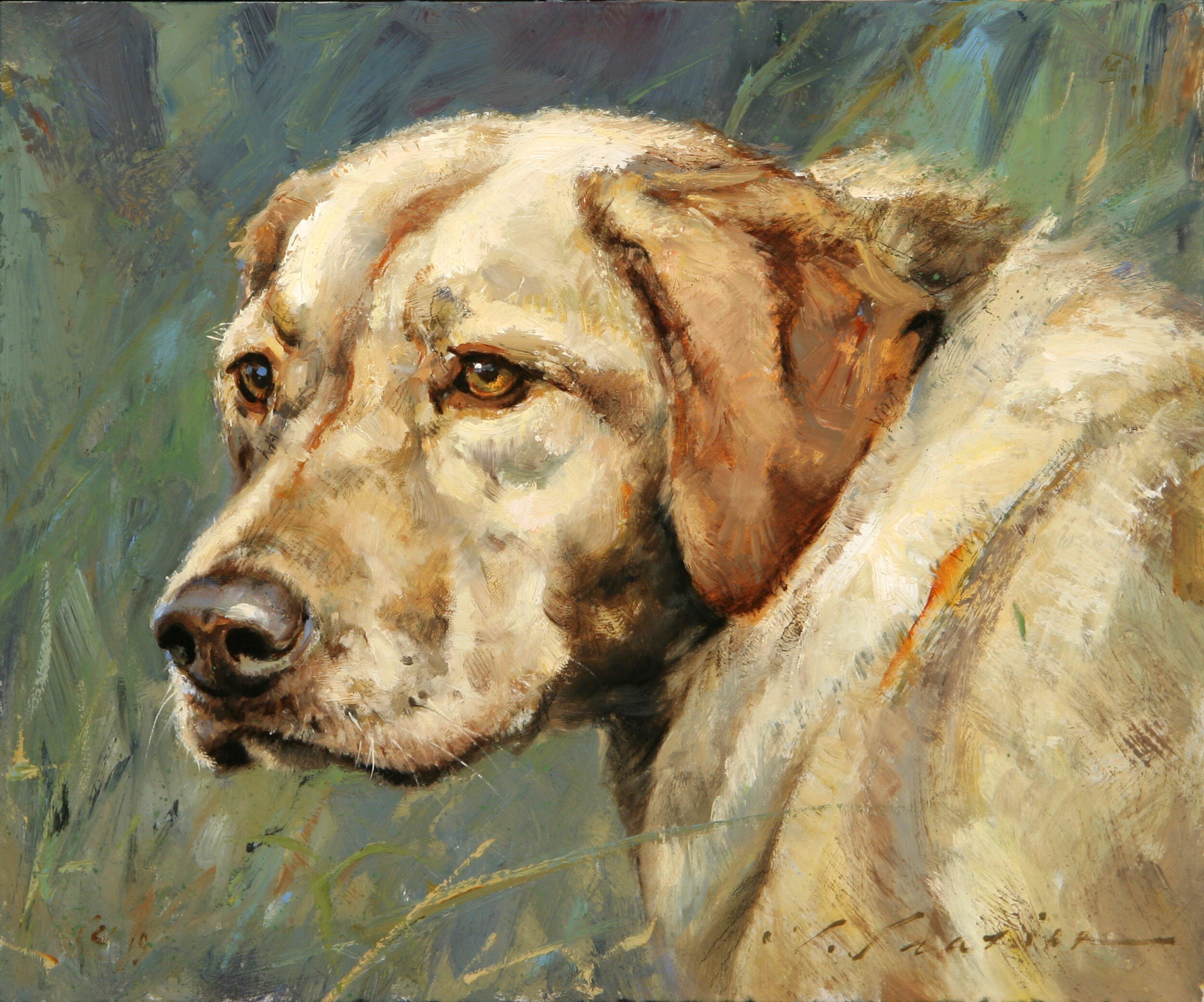 """Loyal Lab"" 10 x 12 Oil"