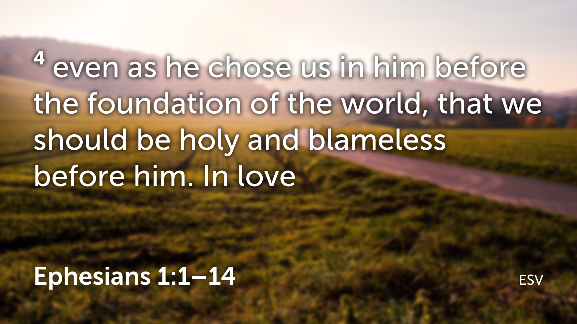 Ephesians 1 1–14.004.png