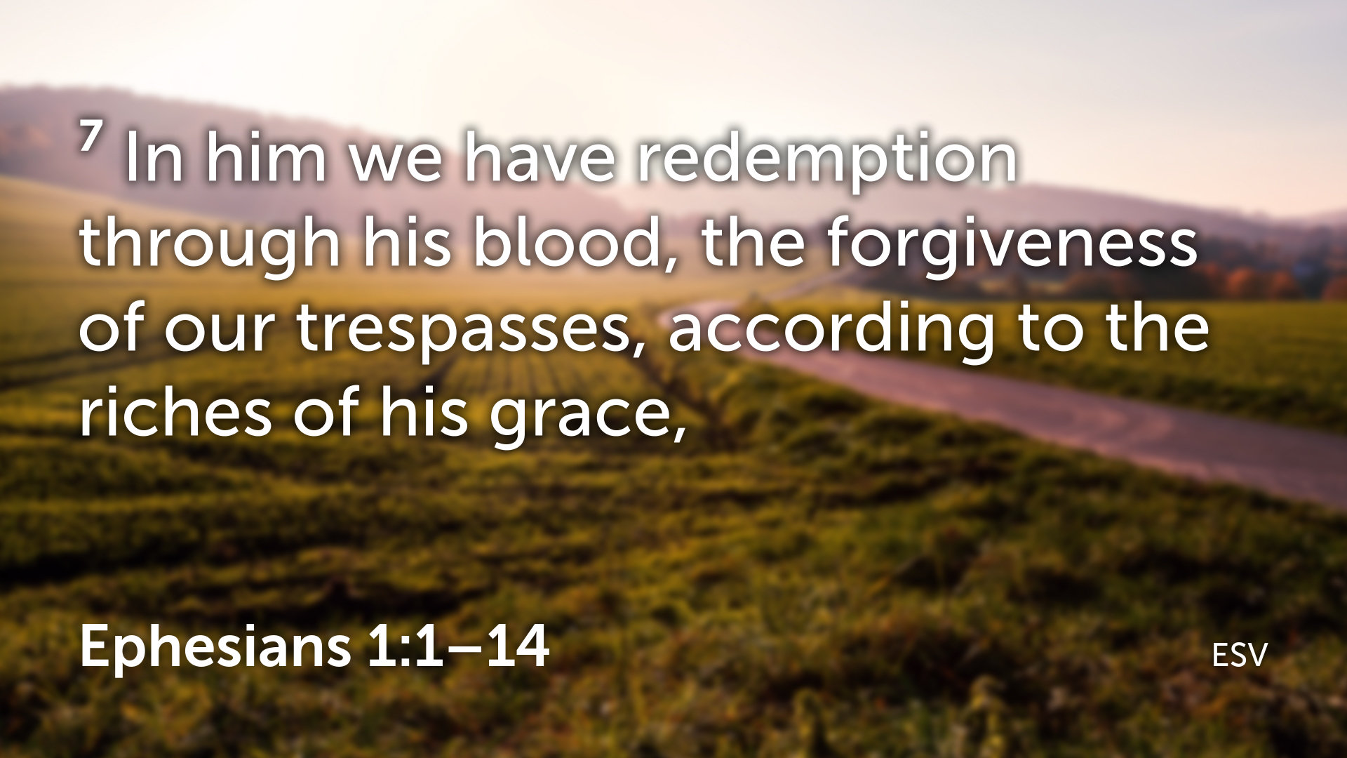 Ephesians 1 1–14.007.png