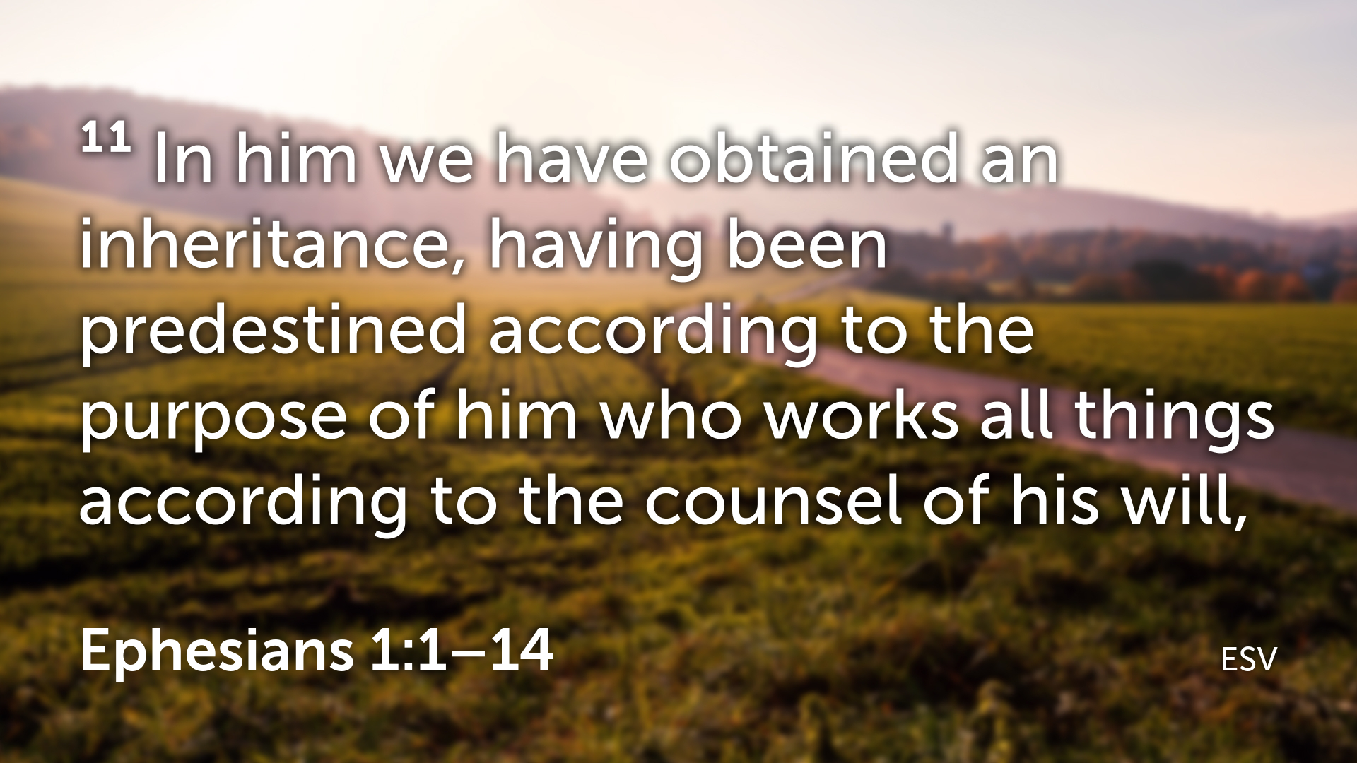 Ephesians 1 1–14.010.png