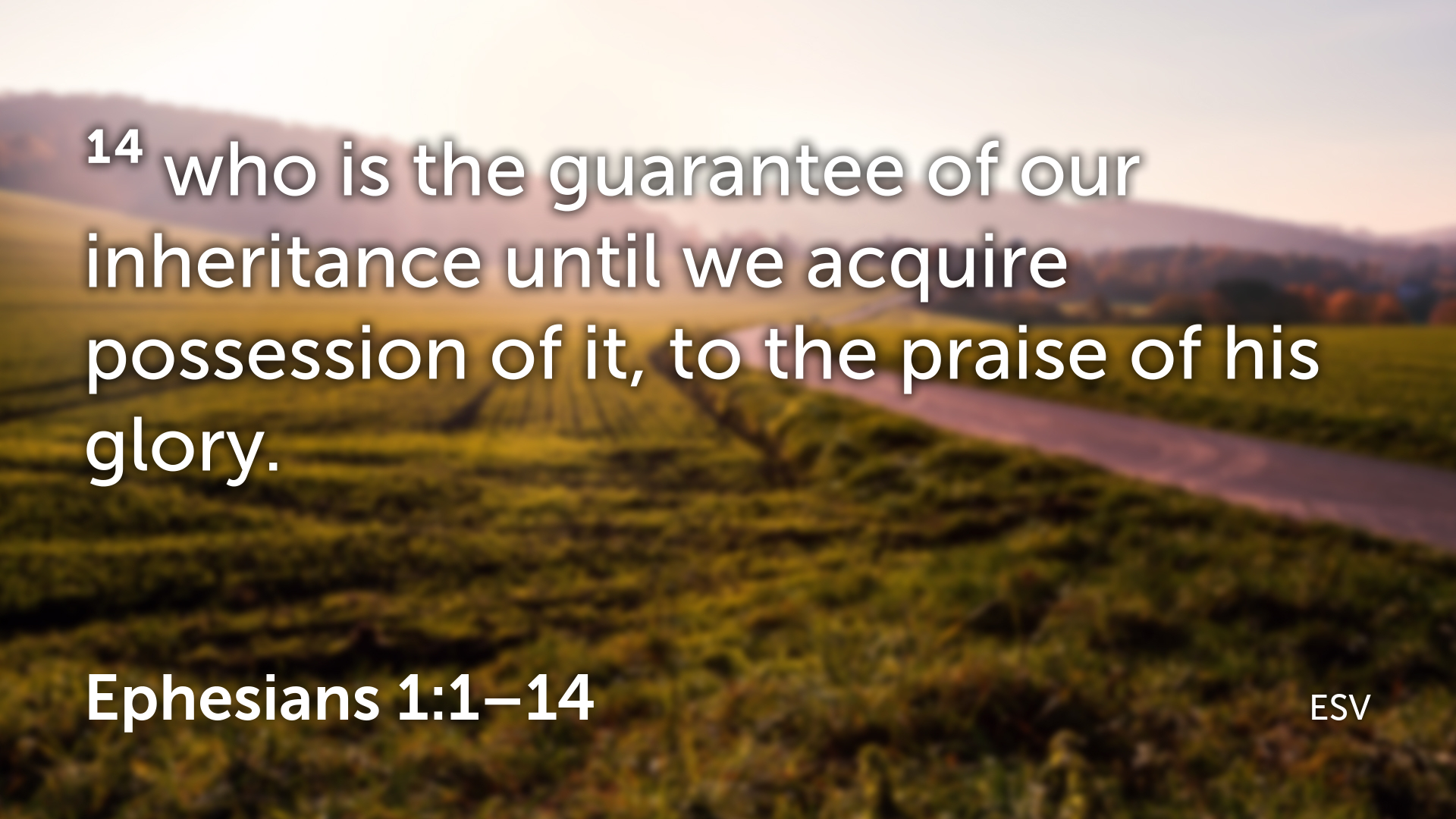 Ephesians 1 1–14.013.png