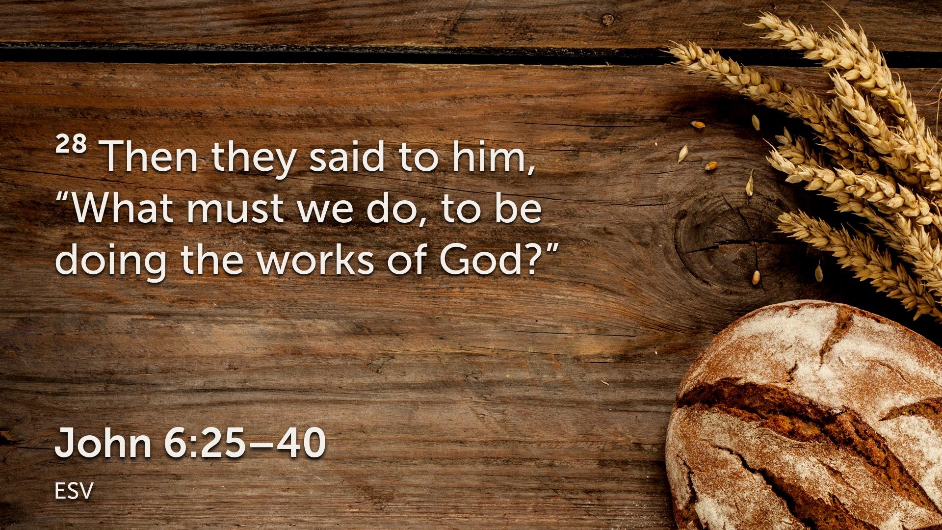 John 6 25–40.004.png
