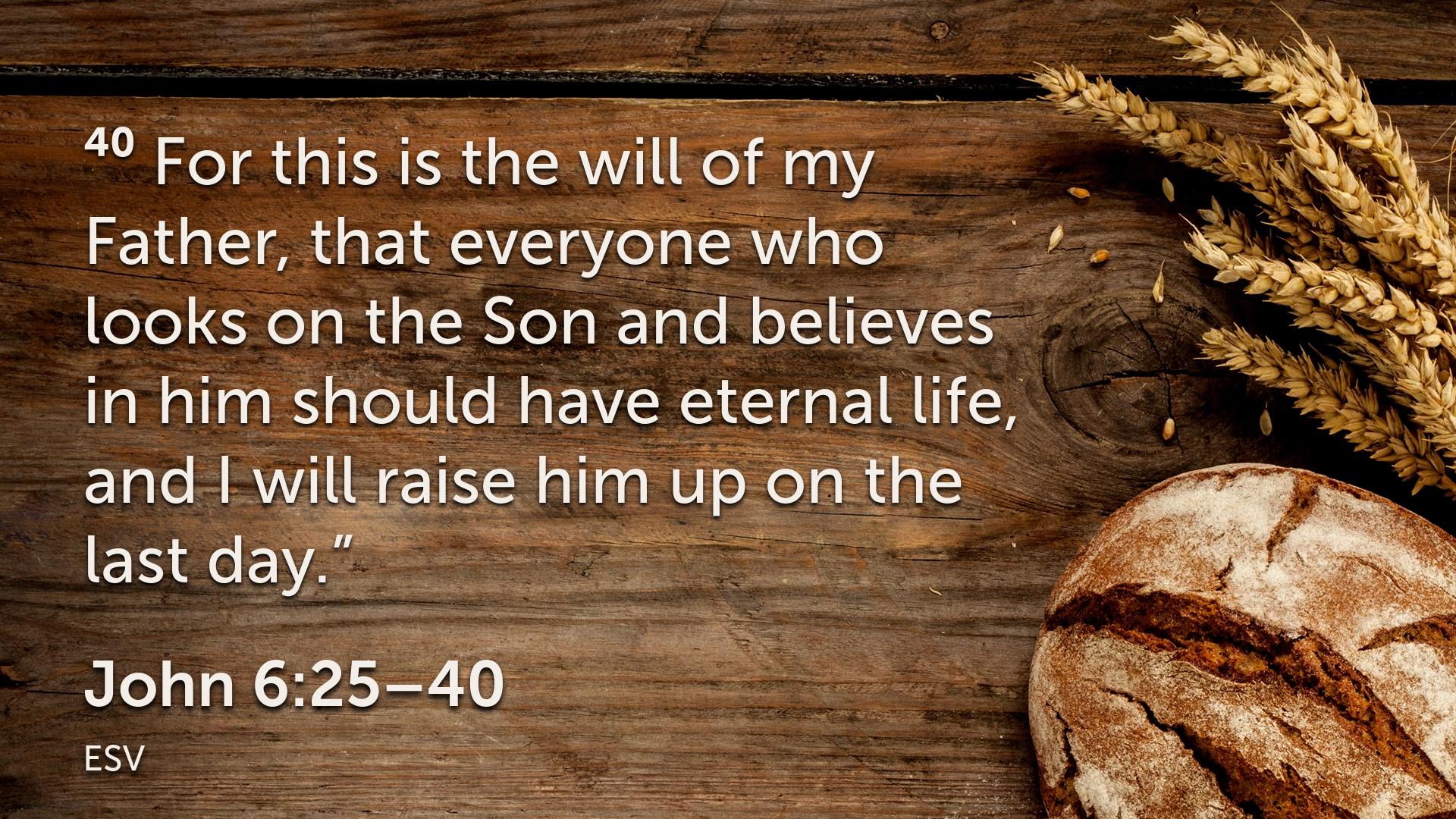 John 6 25–40.015.png