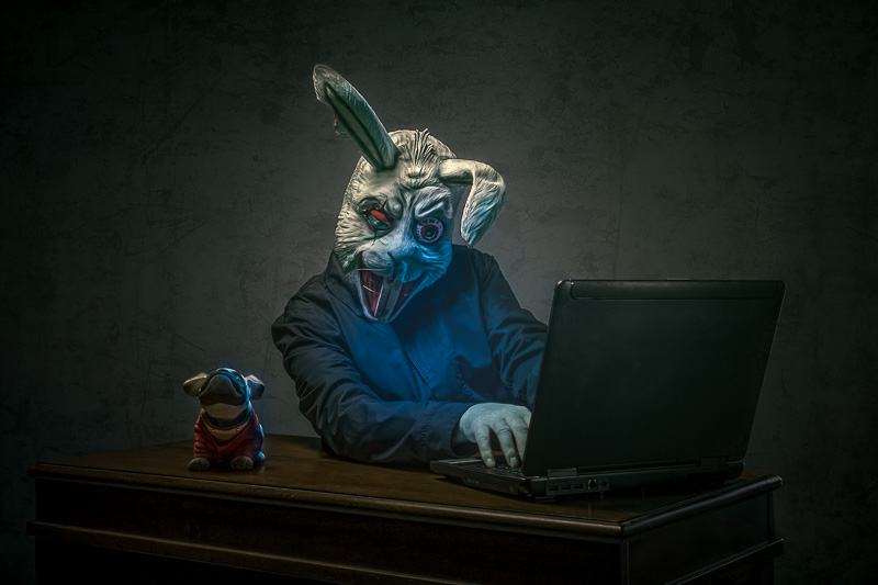 Emailing Rabbit - Highly Commended