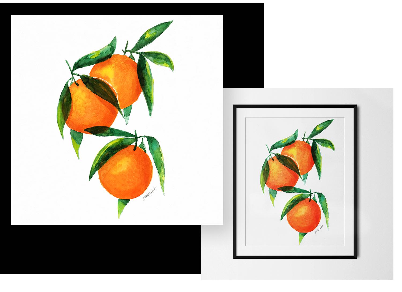 Fruit - Explore the fun juicy collection of oranges, lemons, radishes and pomegranates.
