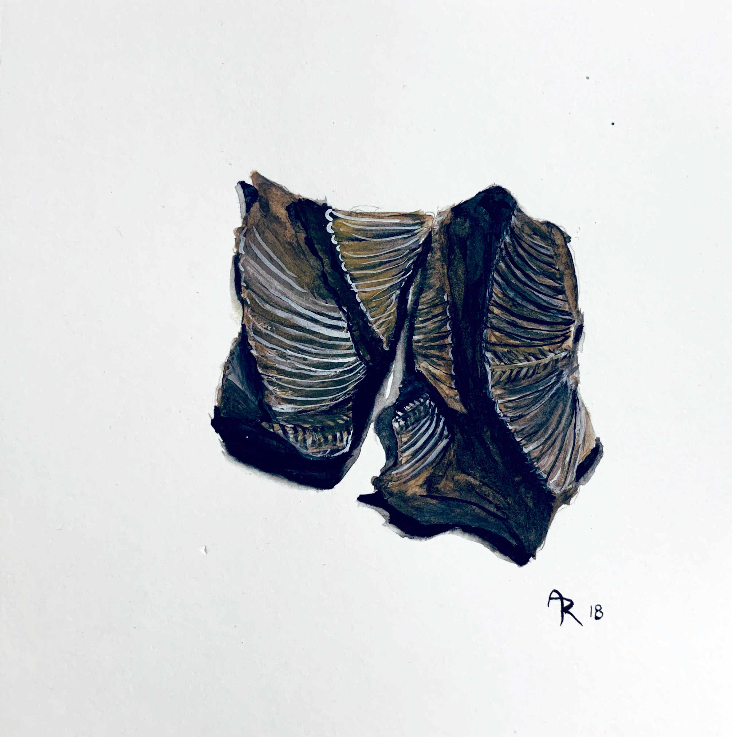FOSSILS , 2018. Watercolor.