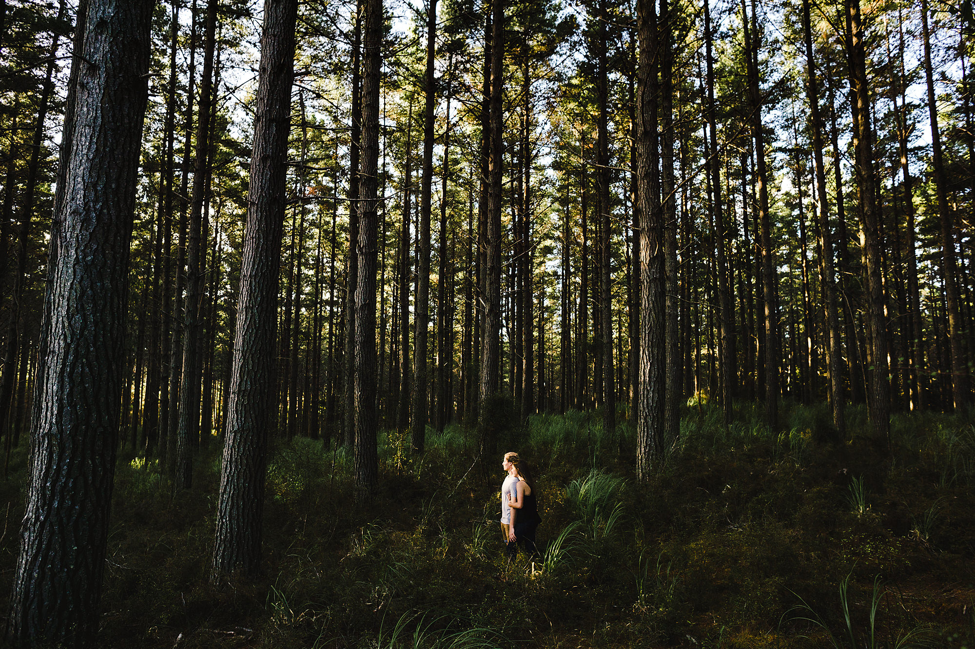 5 couple in forest auckland photography.jpg
