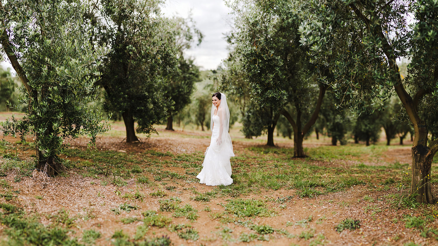 Bride in Bracu Olive groves.jpg
