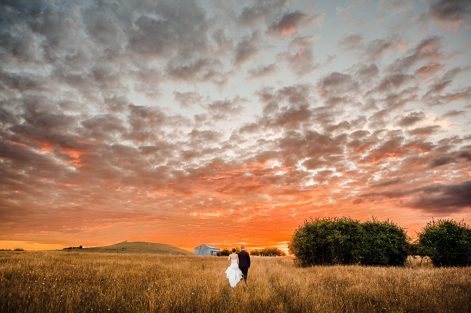 Couple walking into field at sunset.jpg