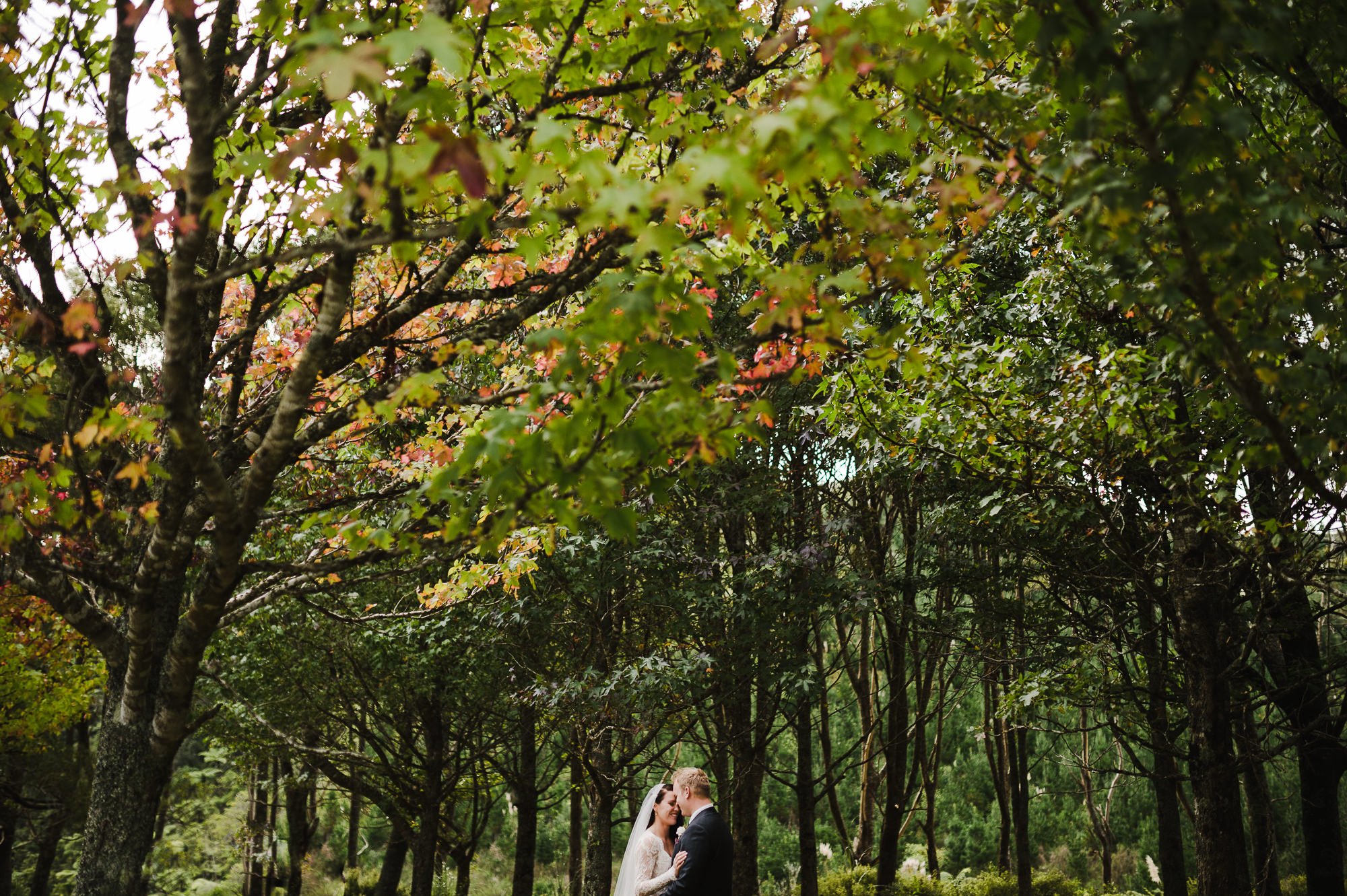 autumn wedding new zealand.jpg