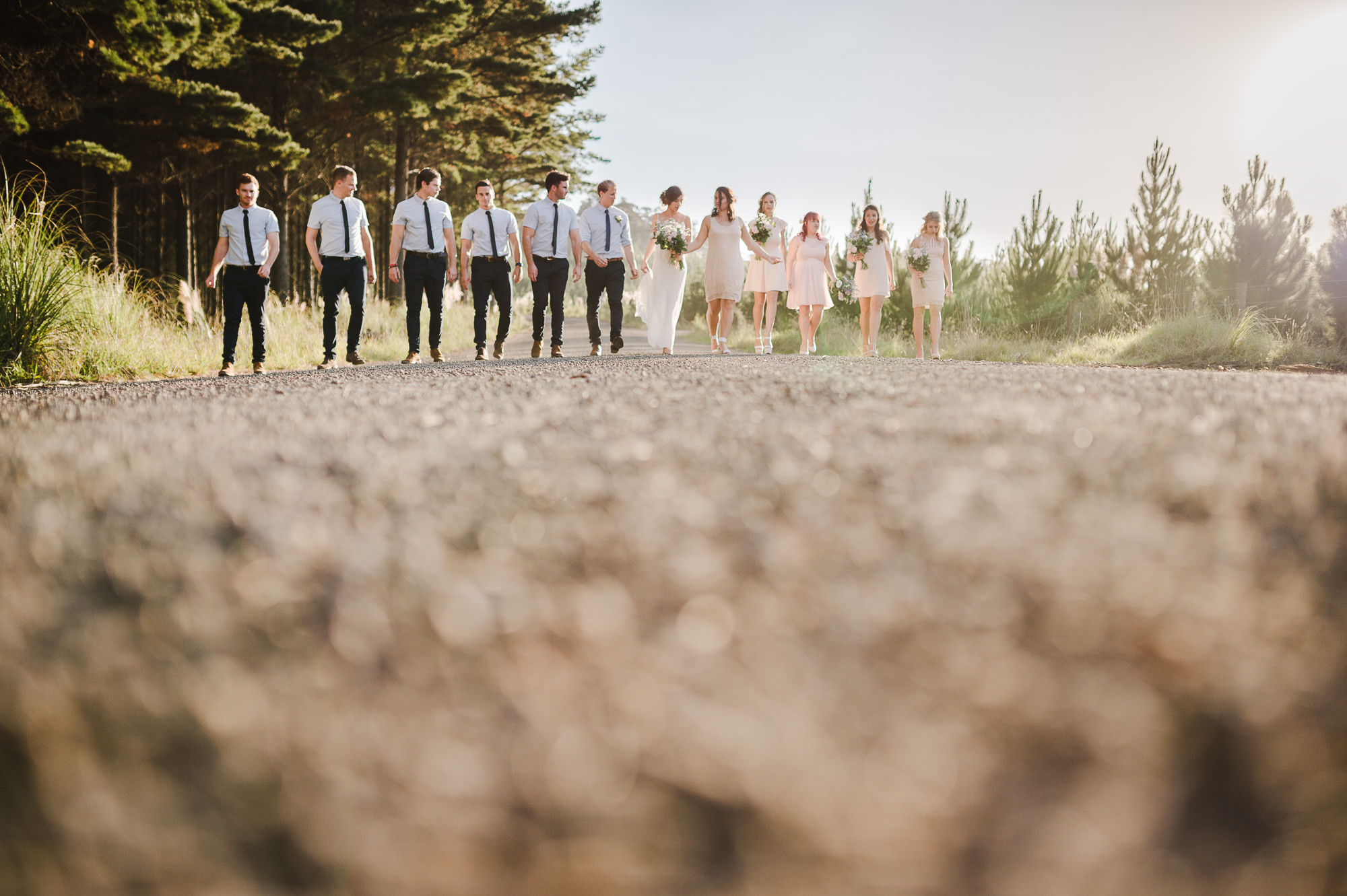 big bridal party walking along road.jpg