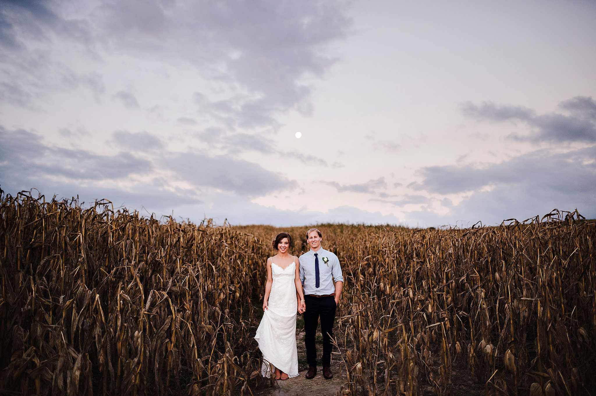 auckland wedding photographer cornfield at dusk.jpg