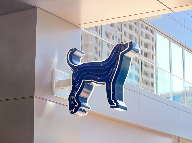 Blue Hound's exposed neon dog logo marking the restaurant's main entrance.
