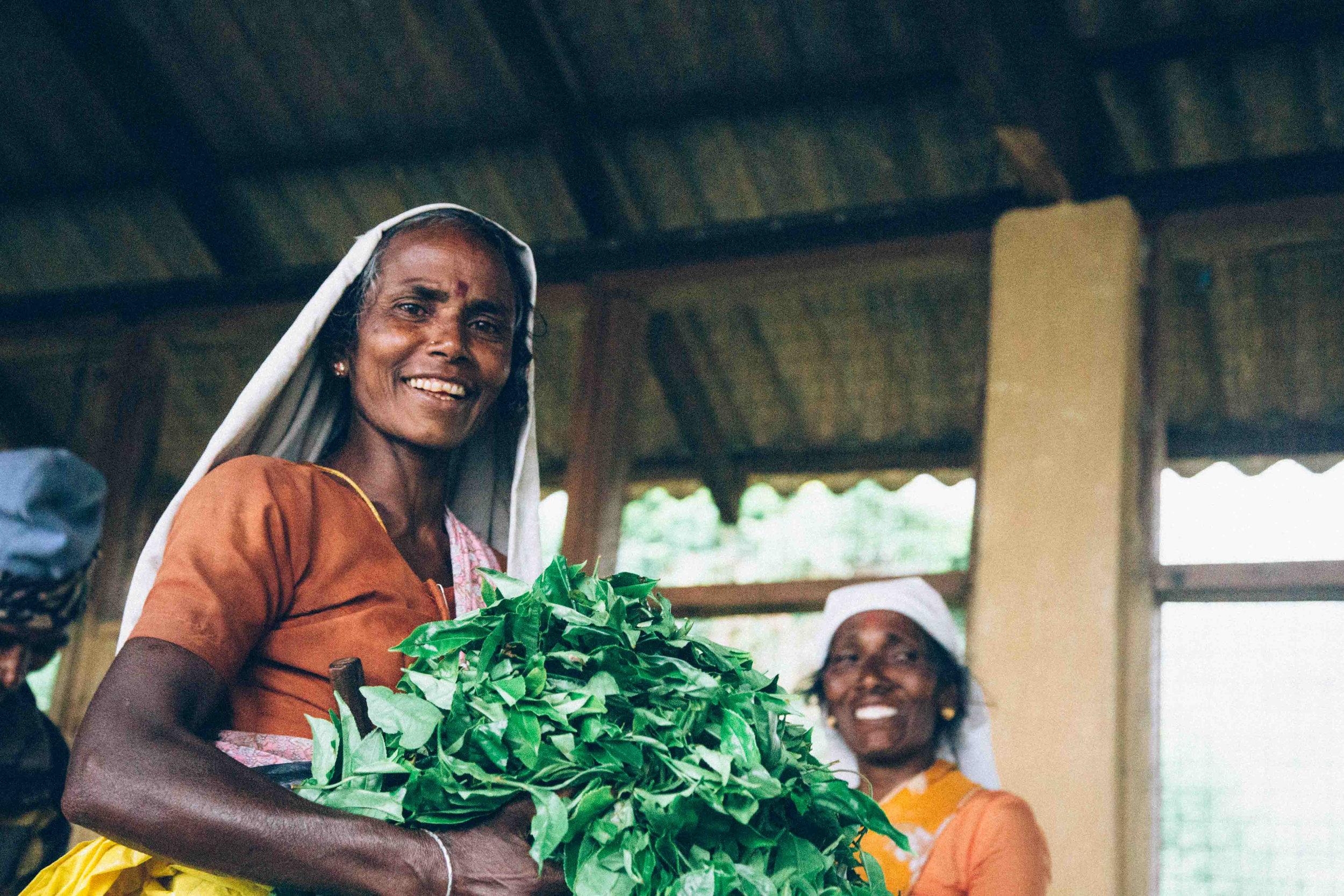 Sri-Lanka-Tea-2-Zach-Ashton.jpg