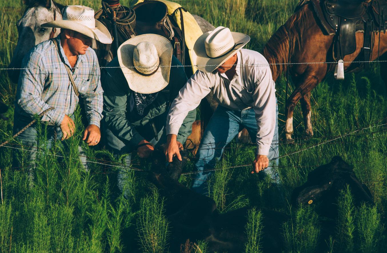 florida cowboys zach ashton 2.jpg