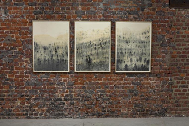 "Eloïse van der Heyden, ""Let Go"", (2013) ."