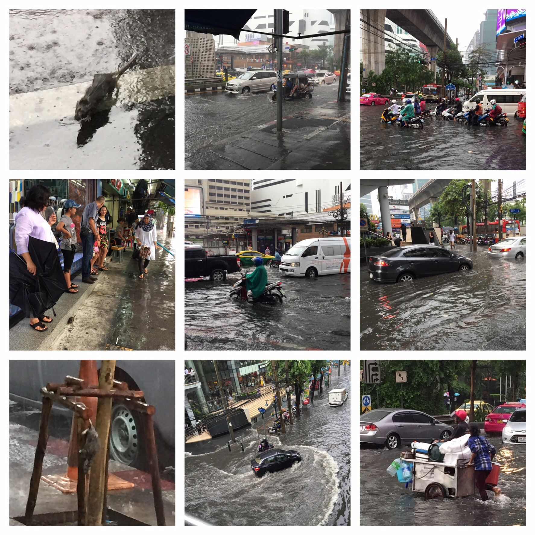 Clockwise from top left: one of the many wet rats, busy tuktuks, hardcore bikers, water level, street vendor, making waves, another rat friend, my fellow shelter-seekers. Centre: the scooter just managed