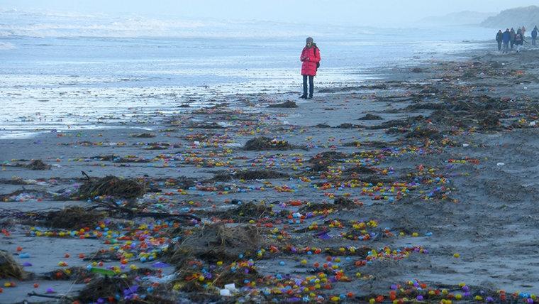 Langeoog Island. Image source: NOZ