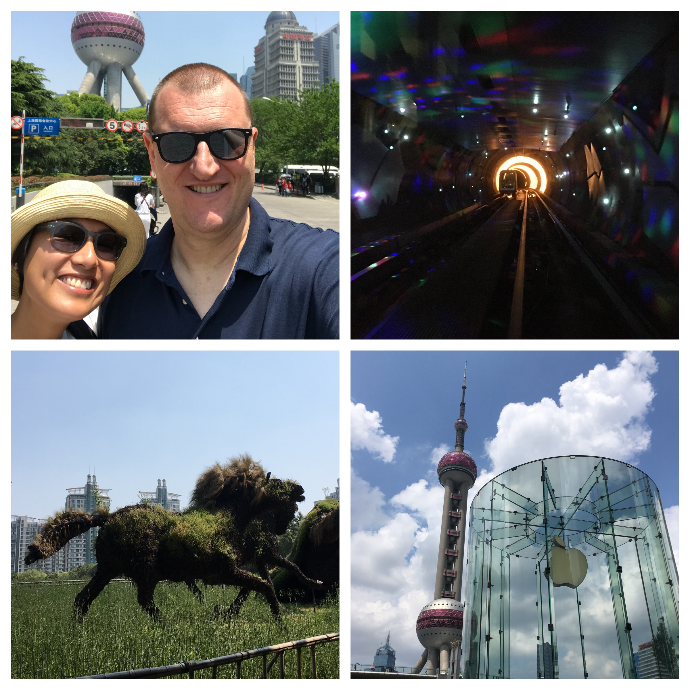 Top left and clockwise: Being tourists at the Oriental Pearl Tower, the psychedelic Sightseeing Tunnel, Christoph's favourite store and garden sculptures at Century Park.
