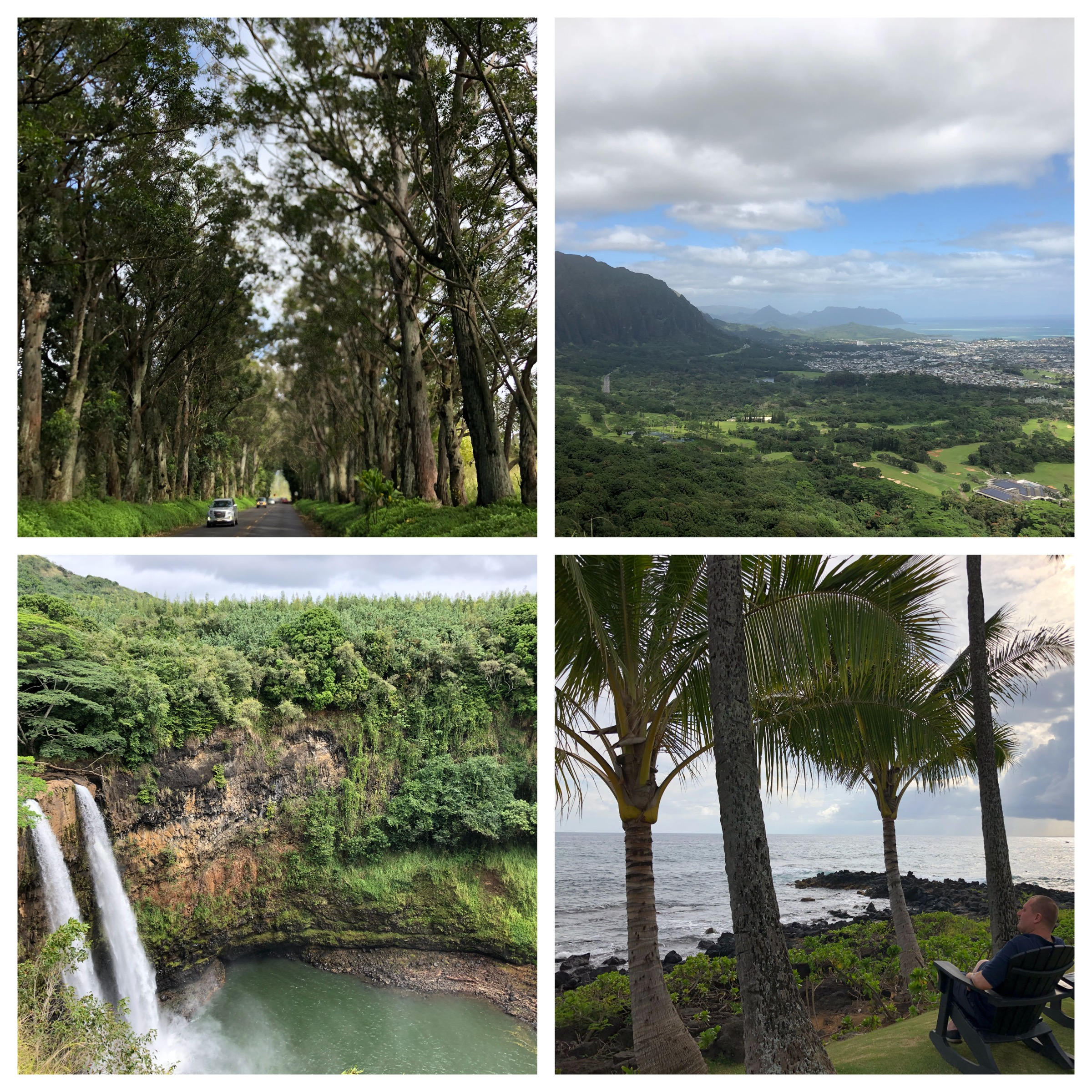 Top left and clockwise; the Tunnel of Trees, view from Nu'uanu Pali, Christoph's favourite spot at Poipu and the Wailua Waterfalls.