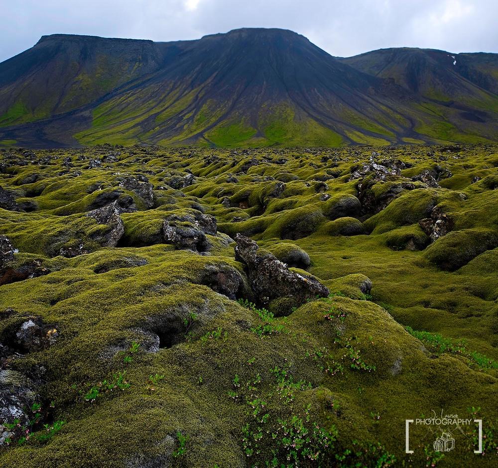 Lava Covered Fields, Iceland.  Photo Credit: Jared Lawson Photography