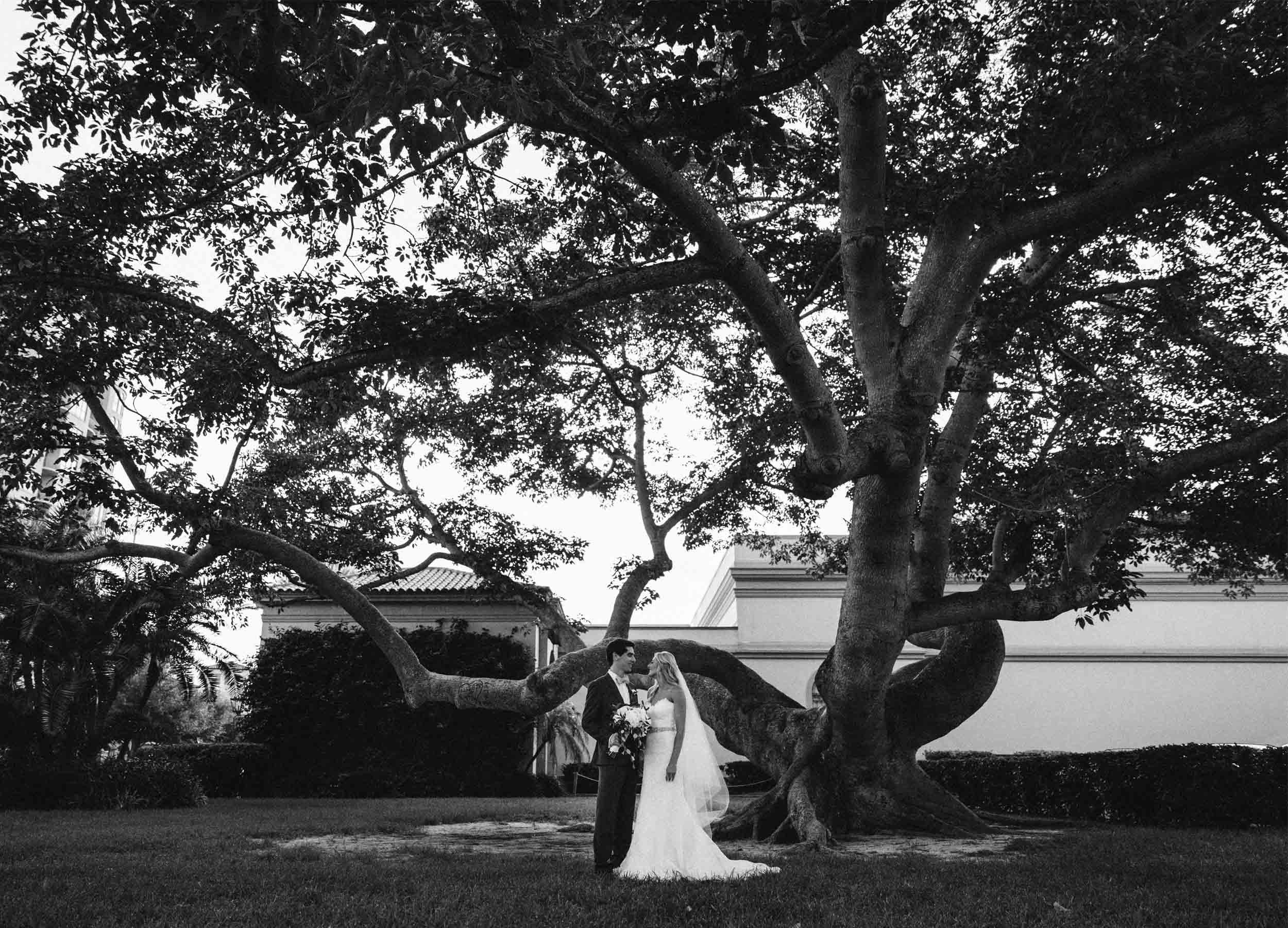 Weddings - our aim is true