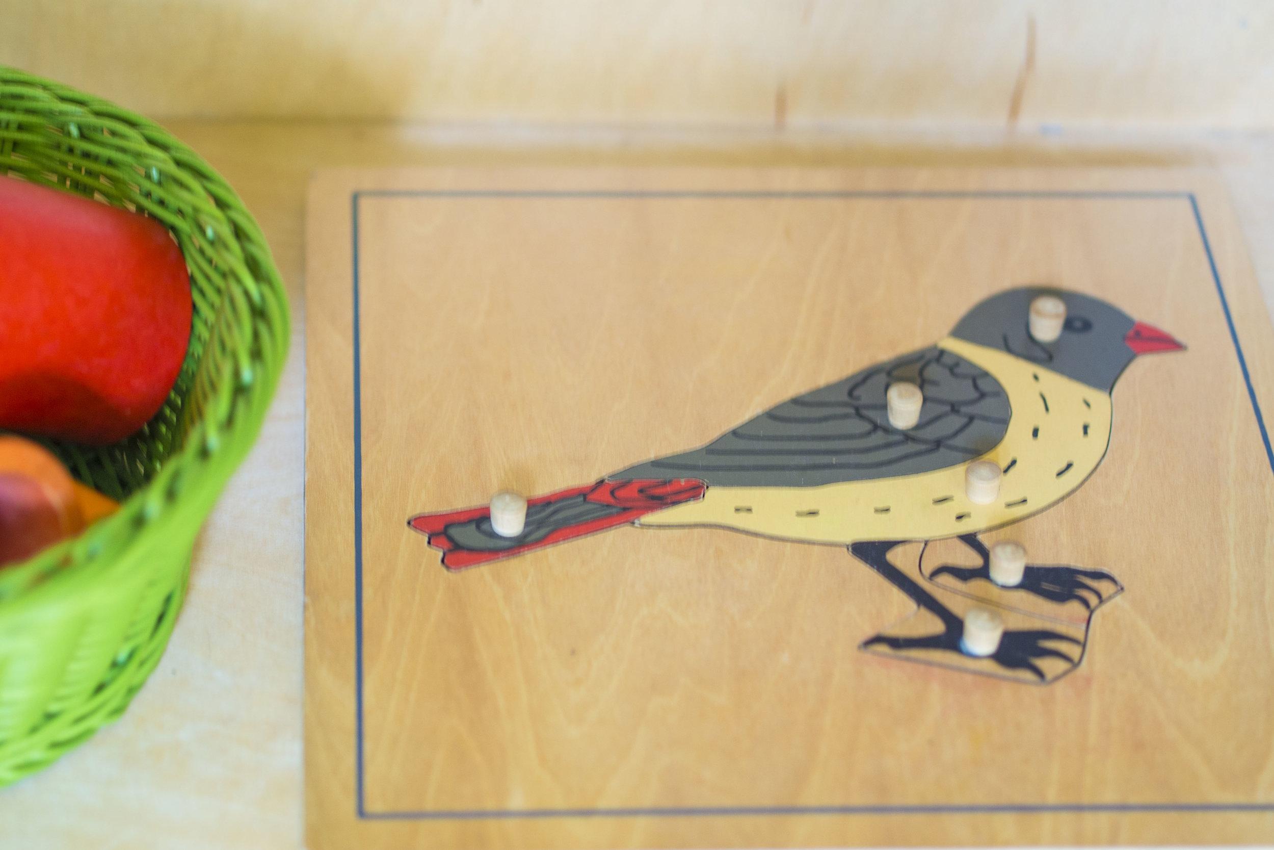birdpuzzle.jpg