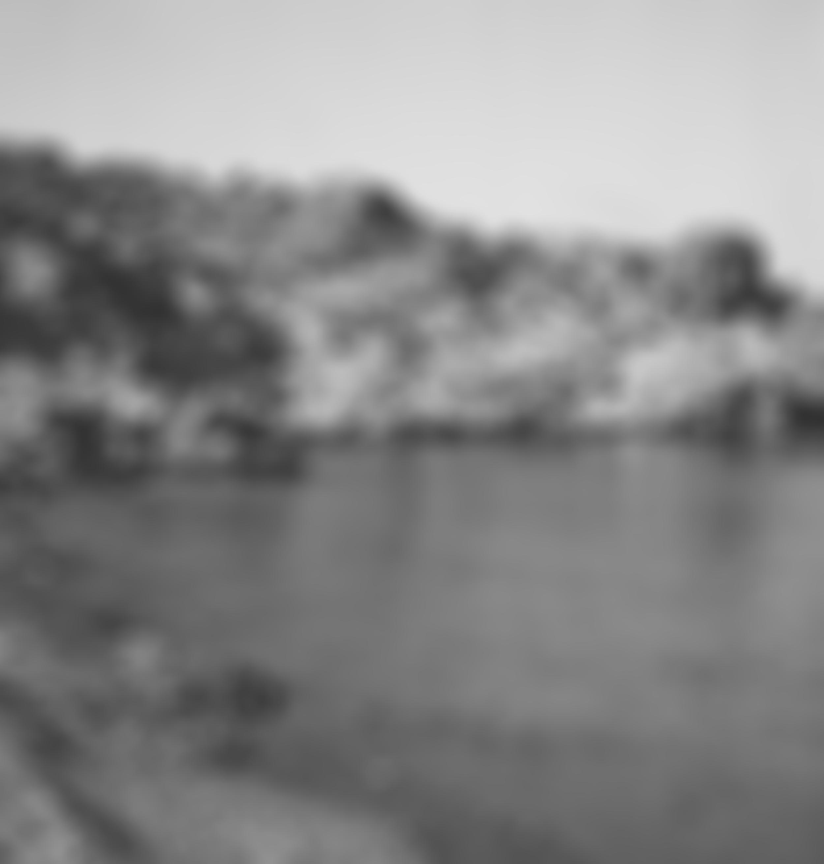 blurred100.jpg