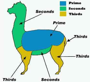alpaca fiber grades.jpg