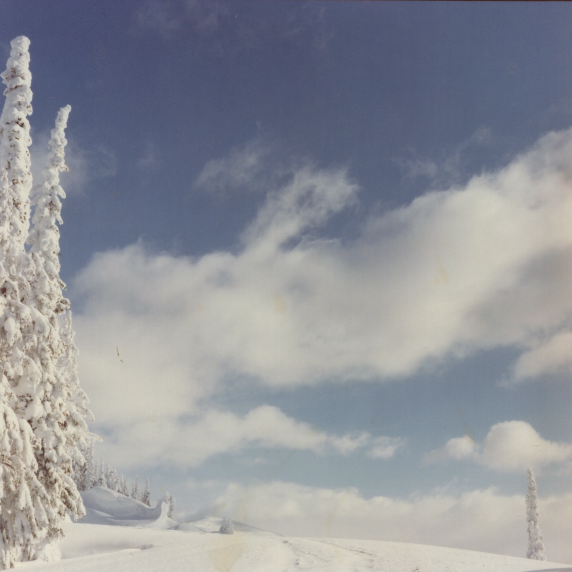 SS_winter_22.jpg