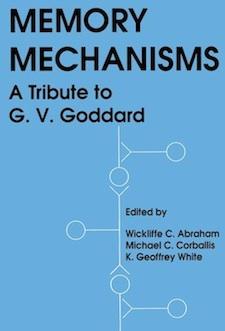 memory-mechanisms.jpg