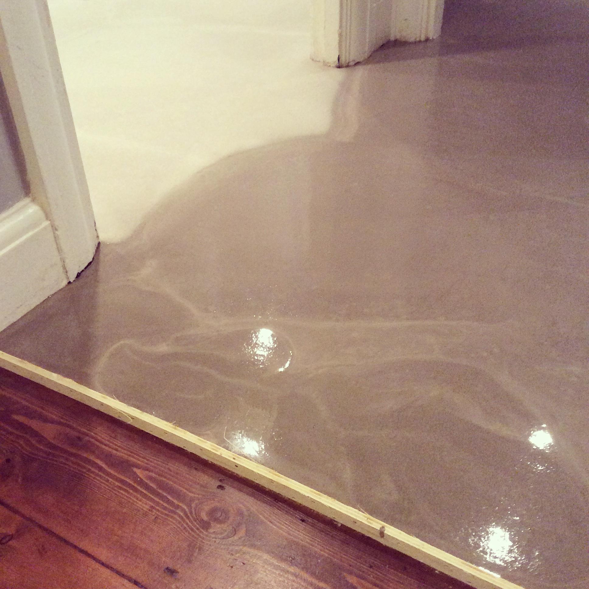 polished screed floor