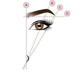 brow map.png