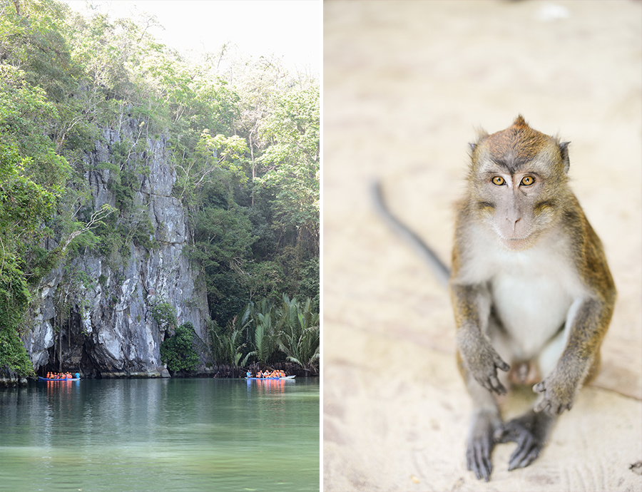 palawan philippines underground river monkey cave