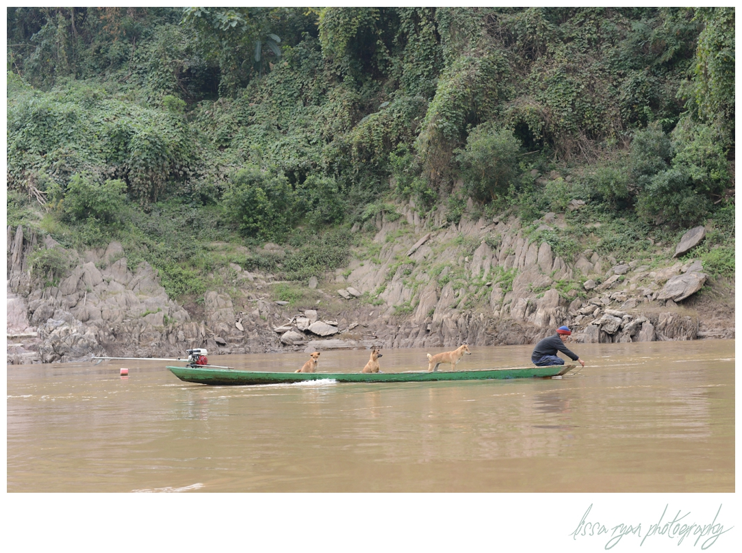 laos mekong dogs boat dc photographer