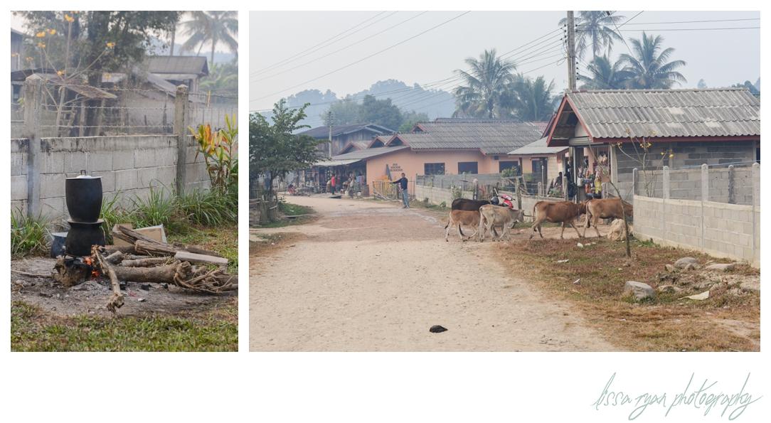 Road to Vang Vieng-30_(blog).jpg