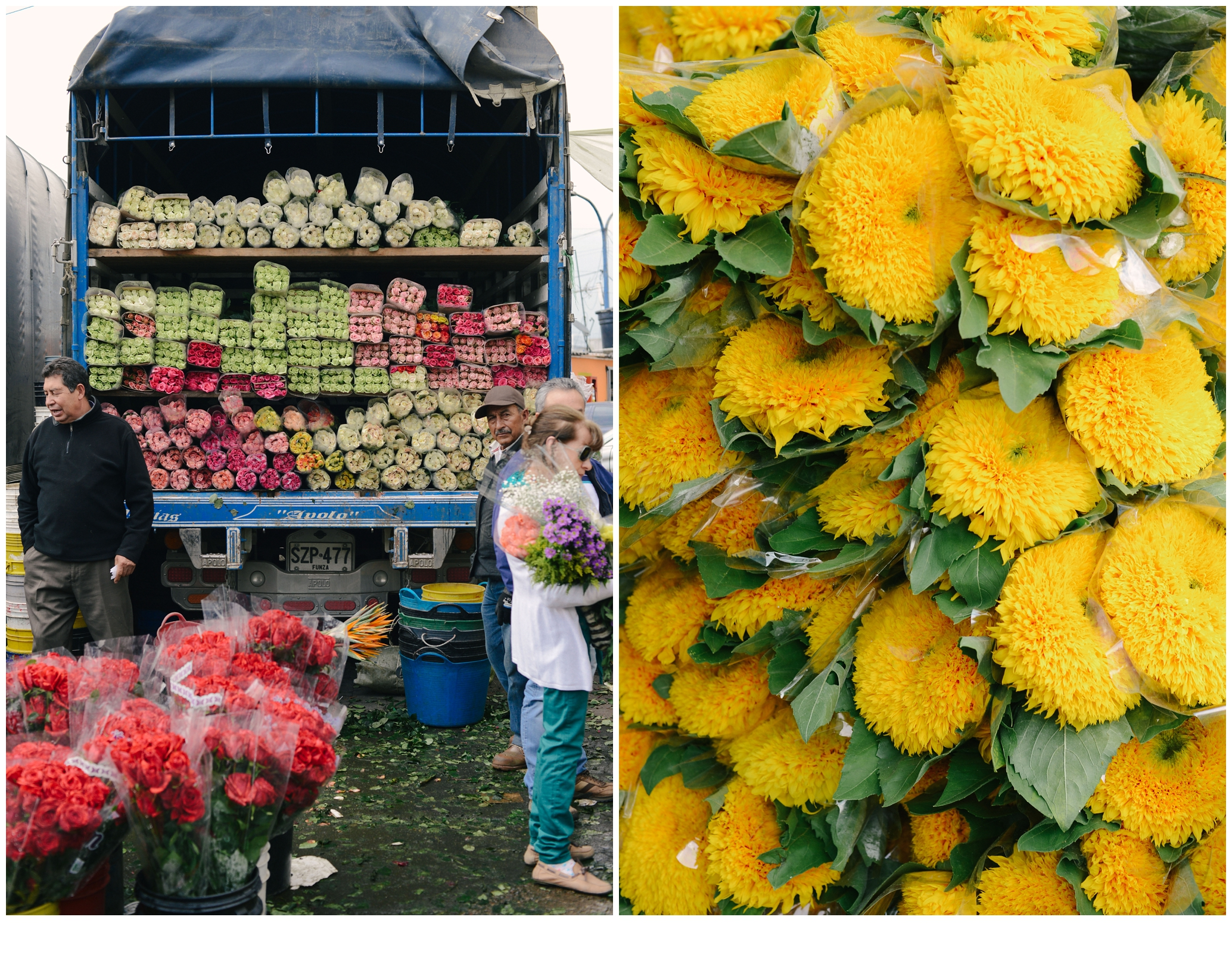 colombia flower market travel photography lissa ryan photography