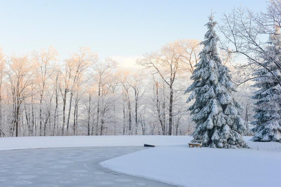 snow day washington dc lissa ryan photography