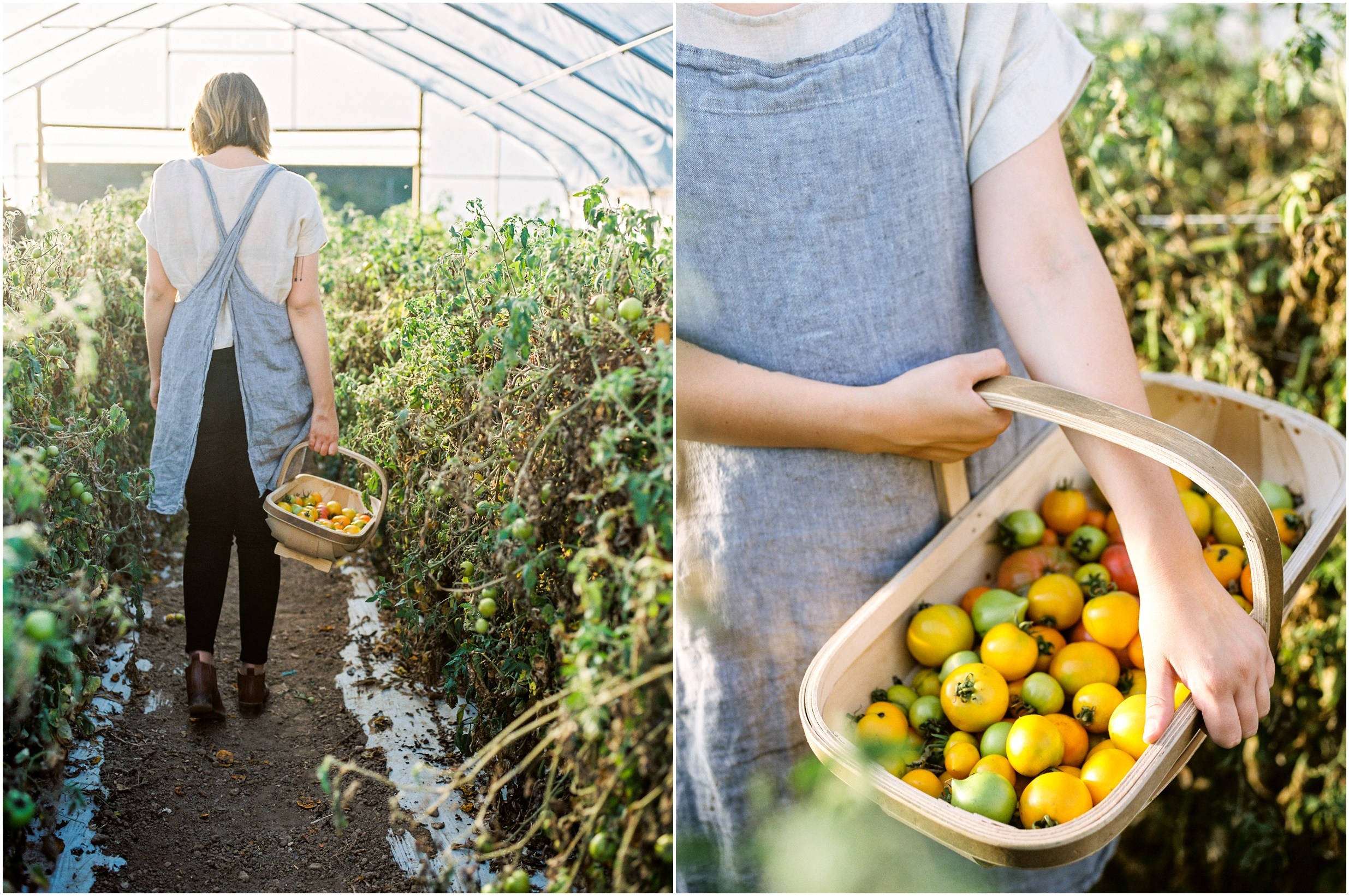 LOOM on the farm profile film lissa ryan photography lifestyle photographer