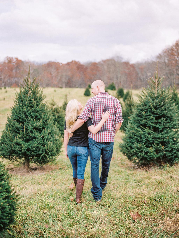 christmas tree farm engagement photos middleburg virginia wedding photographer lissa ryan photography