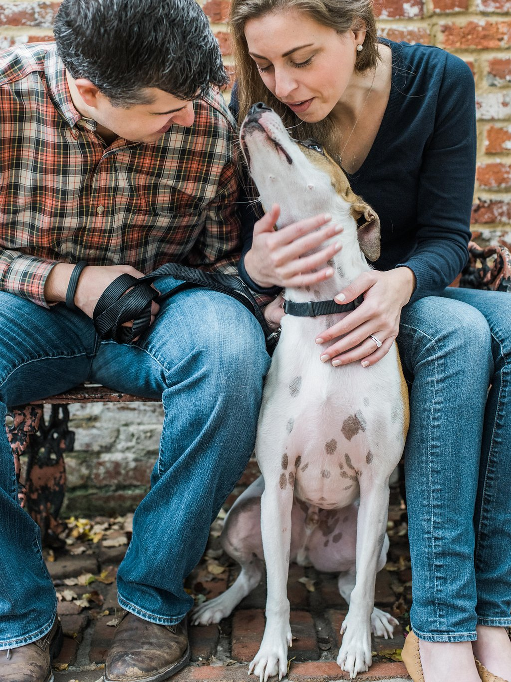 fall anniversary session in georgetown washington dc fine art photographer lissa ryan photography with puppy dog