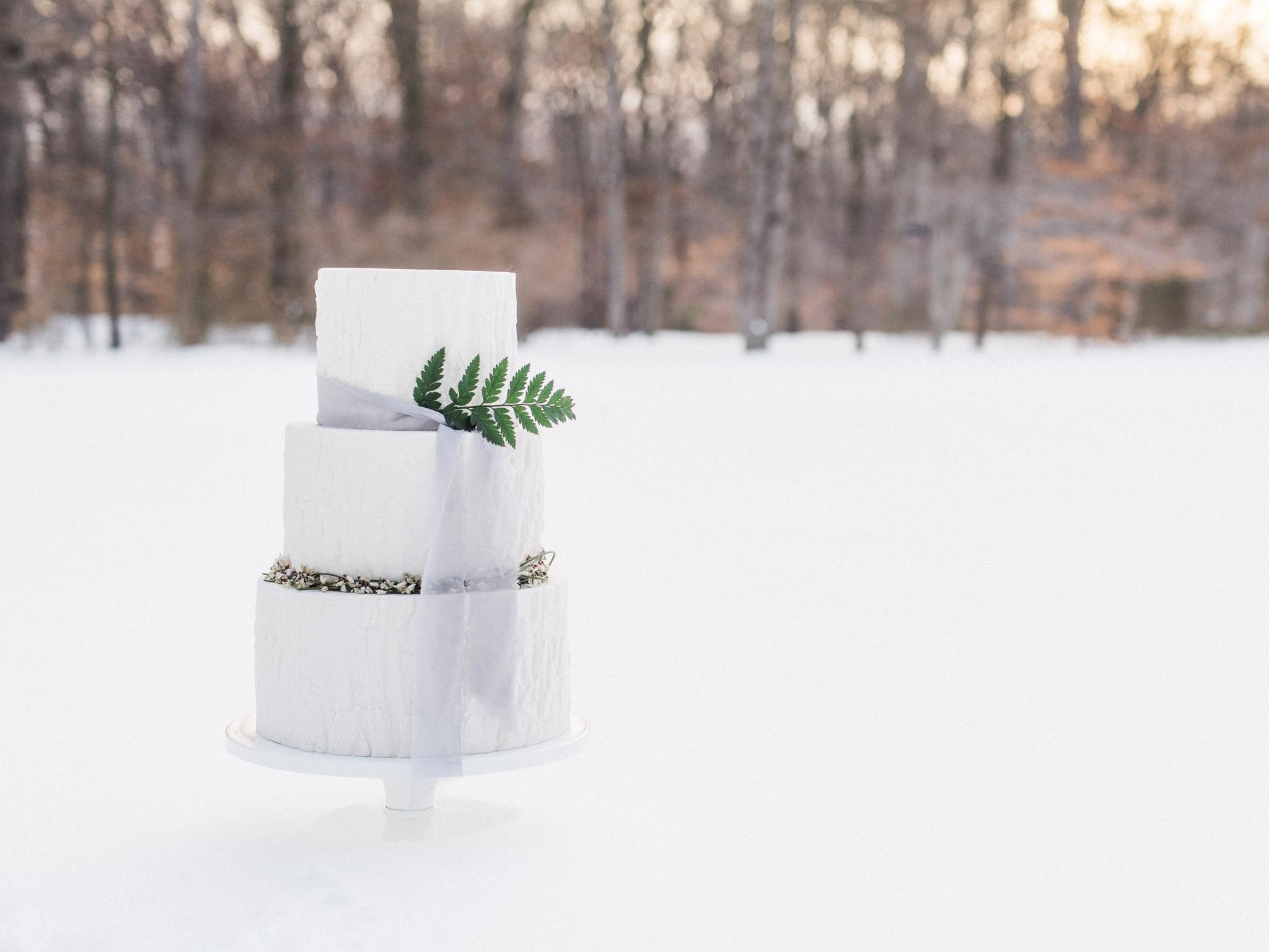 blizzard snow winter wedding editorial by washington dc fine art wedding photographer Lissa Ryan Photography