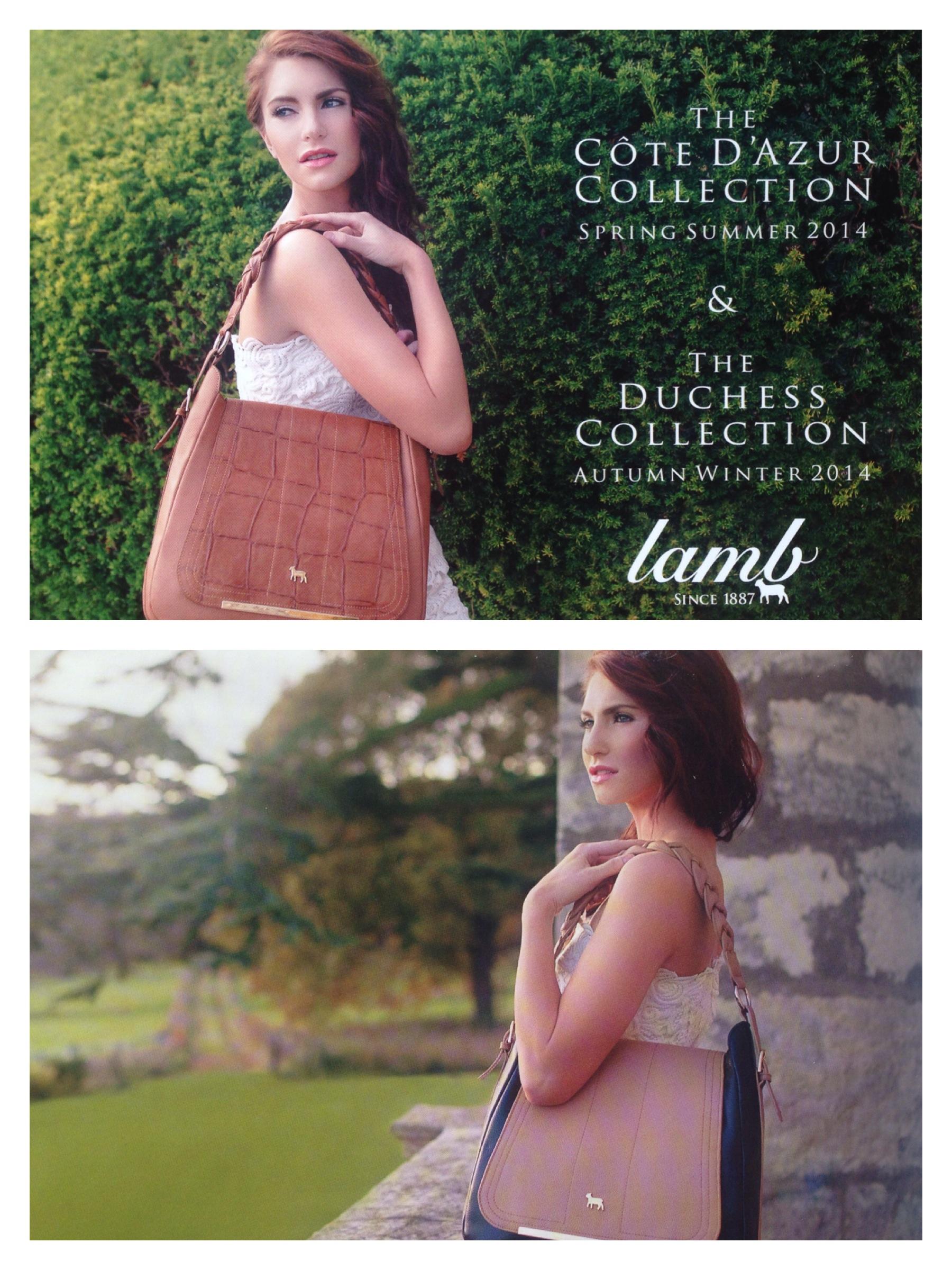 Lamb LB (2).JPG